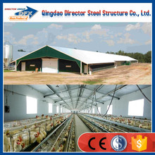 Low-cost Hot Galvanizing Steel Chicken House Layer design Tanzania
