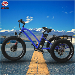 Aluminum Alloy 48V 500w fat tire hydraulic suspension cargo electric tricycle