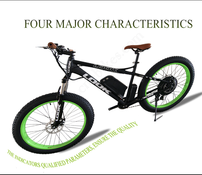 48v 750w electric assisted snow ebike/snow electric bicycle/fat snow e-bike for Christmas gift