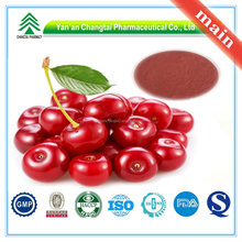 GMP Factory Supply Organic Cherry Blossom Extract Powder