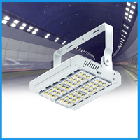 led tunnel lighting 100w OEM and ODM service available aluminum led ip65 pendant
