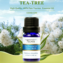 OEM/ODM Health Care Distillation Tea Tree Essential Oil