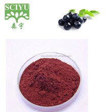 China supplier provide Organic health product lingonberry Extract powder with25% Anthocyanidin