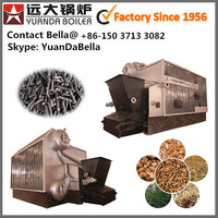 Double Drum Low Ash Wood Pellet Fired Steam Boiler