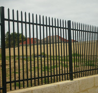 Ornaments Wrought Iron Palisade Fencing with High Security