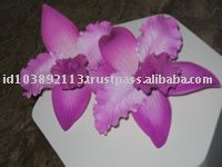 ORCHID - Cattleya Gum paste
