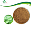 best ginkgo biloba extract from china plant extract
