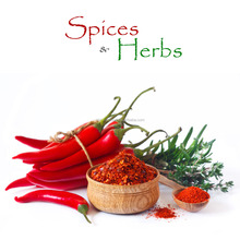 China Supply Dried Pickle Powder Masala Chili Powder and Roasted Chili Powder