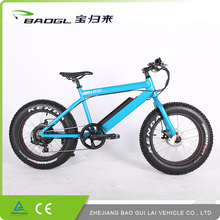 china factory wholesale hot sales adult electric fat bike