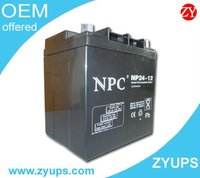 UPS Accumulator Battery NPC Lead Acid Battery 12V24AH (NP24-12)