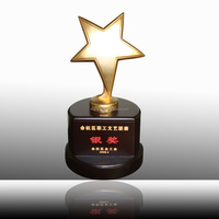Metal star trophy with wooden base