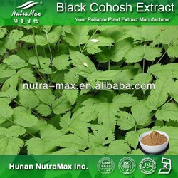 Plant & Herbal Black Cohosh Extract (4:1 5:1 10:1 20:1)