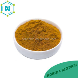 100% Natural Nettle Extract// Nettle Root Extract powder with Factory Price