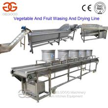 Continuous Industrial Vegetable And Fruit Washing And Drying Machine