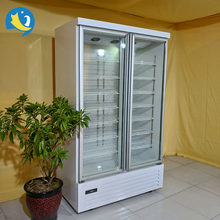 Supermarket glass door display refrigerator/0~10 degree beverage cooler/drinks display chiller