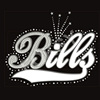 Bills embroidered iron-on patches, embroidered rhinestone motif