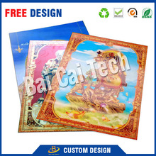 China supplier custom waterproof decorative plastic 3d lenticular picture