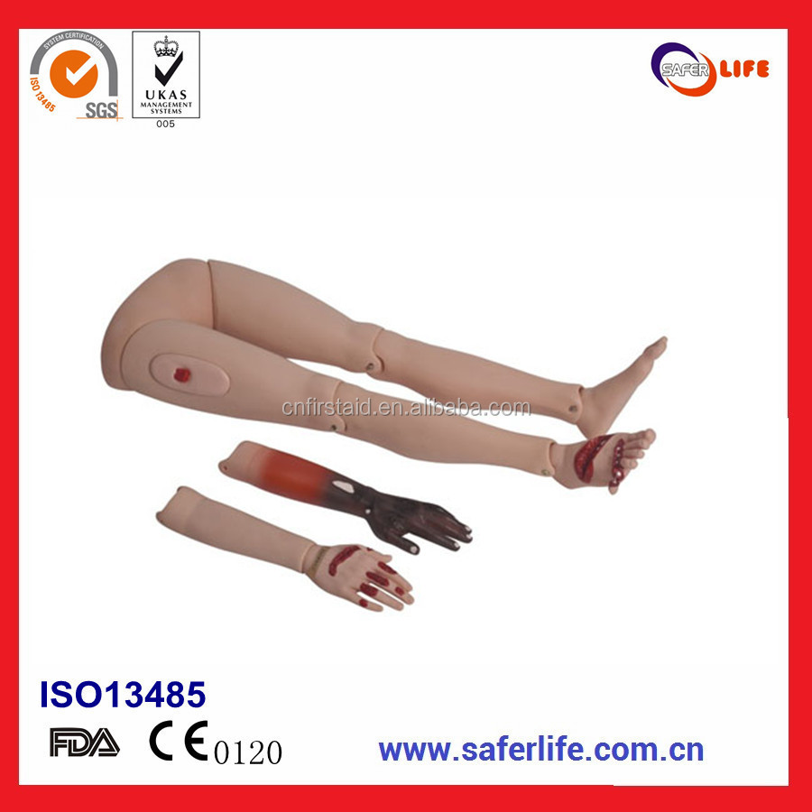 2017 Hot Sell Good Quality arms and legs Traumatic wound Knife Burn Wound Trauma limbs model