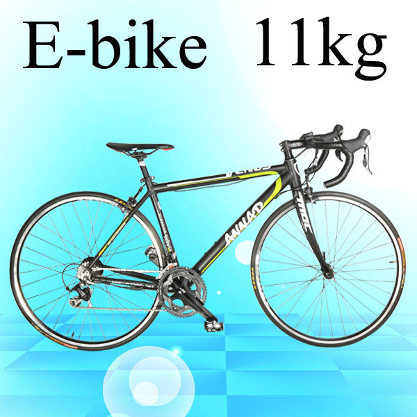 EN15194 electric road giant bicycle