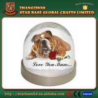 Cheap custom popular cute dog snow globe picture frames wholesale