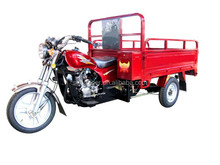250cc 3 wheel tricycle for 2 adults and sale