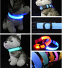 Nylon led dog collars , led dog collar dog leashes sex dog , led collars