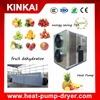Hot sale dried fruit processing machine/mango/lemon drying machine