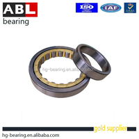 Cylindrical Roller Bearing NU2208E.TVP2