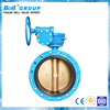 Cast Iron DN600 Flanged Gear Operator Butterfly Valve Price