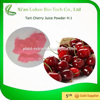 100% natural pure acerola cherry extract vitamin c,made in china frozen cherry juice powder