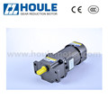 Houle AC 25W with brake gear motor reversible reduction motor with low rpm high torque