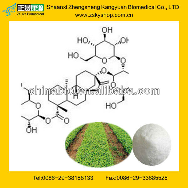 GMP Manufacturer Supply Stevia Extract Rebaudioside A