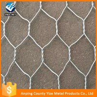 China professional factory tree guard hexagonal wire mesh fence