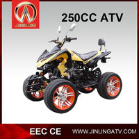 gas powered vehicles for adults cheap 250CC atv amphibious vehicles for sale