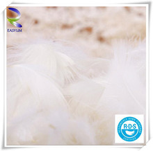 Alibba China Wahsed Duck and Goose Down Feathers Wholesale