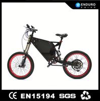 Strong Fast Promotional Cheap Adult Electric Bike For Sale with the TFT display