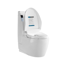 Japanese smart Toilets Bidets Shower Combined Toilet And Bidet