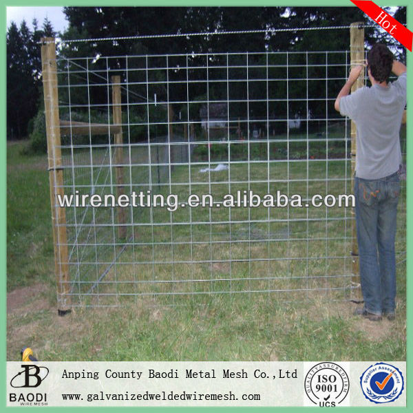Welded wire mesh 50x50 (Baodi Manufacture ISO9001:2000)