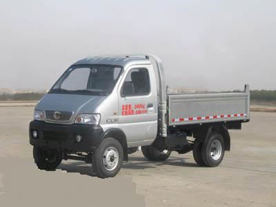 HOT SALE CLW DIESEL MINI CARGO TRUCK