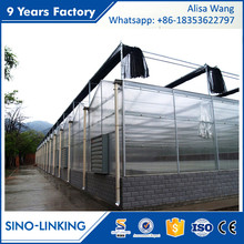 SINOLINK venlo polycarbonate sheet tubular PC Polycarbonate greenhouse for sale