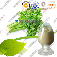 Factory Supply Apium Graveolens Extract Celery Extract 98% Apigenin