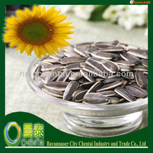 American Type Sunflower Seeds Distributors