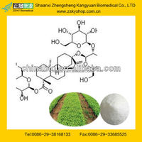 GMP Manufacturer Supply Stevia Leaf Extract Powder
