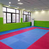 Sports equipment taekwondo floor mats