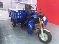 Cargo use for and open body type three wheeler/Motorized driving type 3 wheel cargo use for tricycle with heavy load capacity