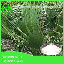 Nature Saw Palmetto Fruit Extract /25%-90% Fatty Acids & Sterols
