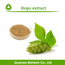 Humulus Lupulus Extract Hops Flavones 3% 5% 6% hops and lupulin extract powder