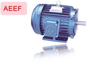 induction motor (series foot mounted)