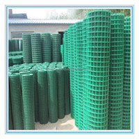 "1/2"" pvc coated welded wire mesh (ISO 9001 factory )"