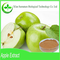 Supply high grade green apple extract
